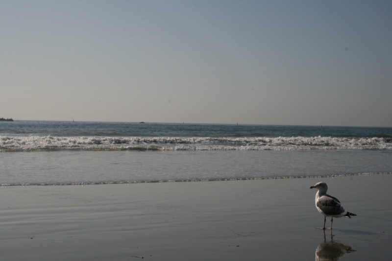 Oceano Pacifico