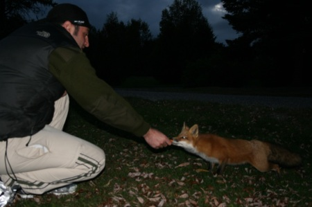 Ric and the fox